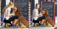 Аманда Сейфрид целуется со своим псом