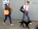 Кейт Миддлтон и принц Уильям добирались домой пригородным поездом