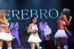 Группа «Серебро» фото