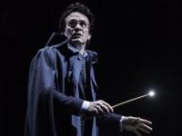 Спектакль о Гарри Поттере получил рекордное количество театральных премий «Оливье»