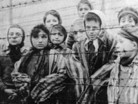 Вячеслав Кантор: как Холокост стал «прививкой от антисемитизма» для Европы