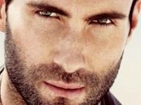 Адам Левин и еще 5 наиболее сексуальных мужчин 2013 года
