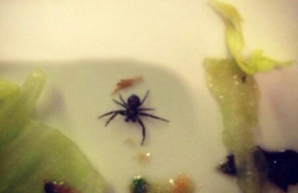 DJ Smash нашел паука в обеде на борту авиакомпании «Трансаэро»